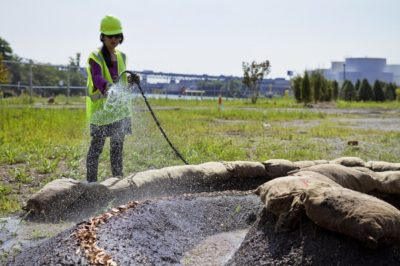 Jan Mun watering The Fairy Rings at the ExxonMobil, Greenpoint Remediation Project Site. Photo by Mitch Waxman.