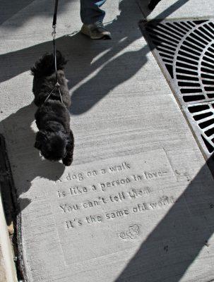 Poem by Pat Owen, photo by Mike Hazard.