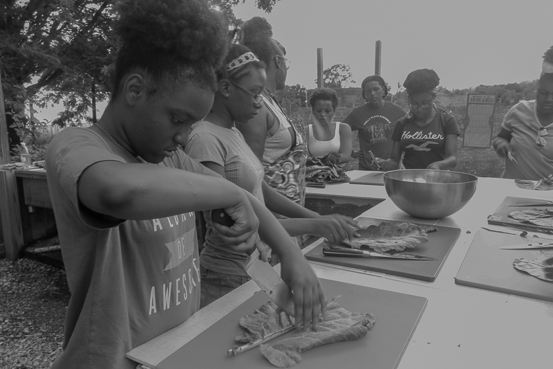 Learning knife skills by de-ribbing collards at Our Mothers' Kitchens Camp, 2017. Photo: Gabrielle Clark.