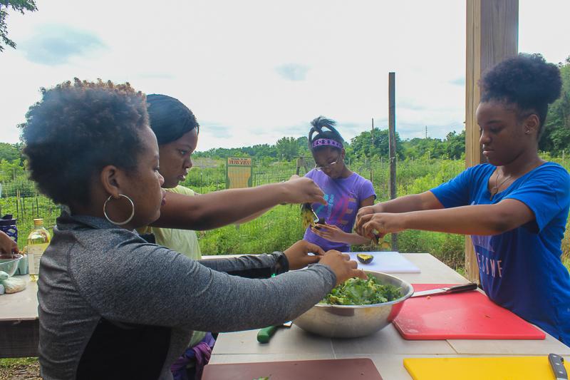 Prepping a farm fresh kale salad, Our Mothers' Kitchens Camp, 2017. Photo: Gabrielle Clark.