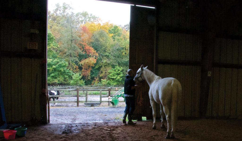 Ebony Horsewomen, Inc. Equestrian Center, Hartford, CT. Photo by Melanie Crean.
