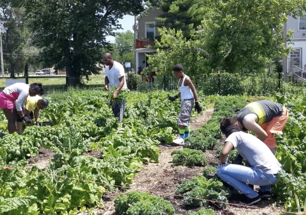 Gardening at Perry Ave Commons, via Sweet Water Foundation
